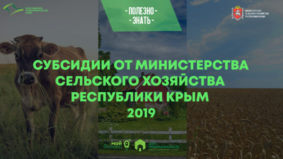 Министерство сельского хозяйства Крыма начало прием документов на предоставление субсидий