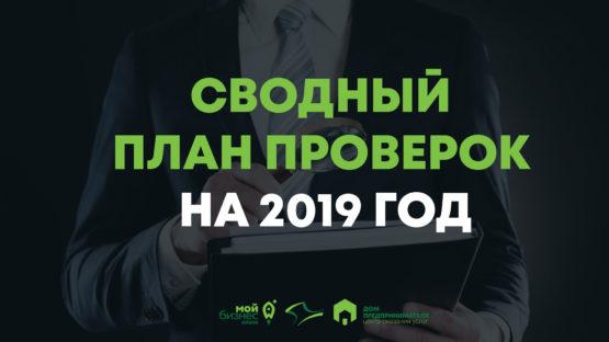 Сводный план проверок на 2019 год