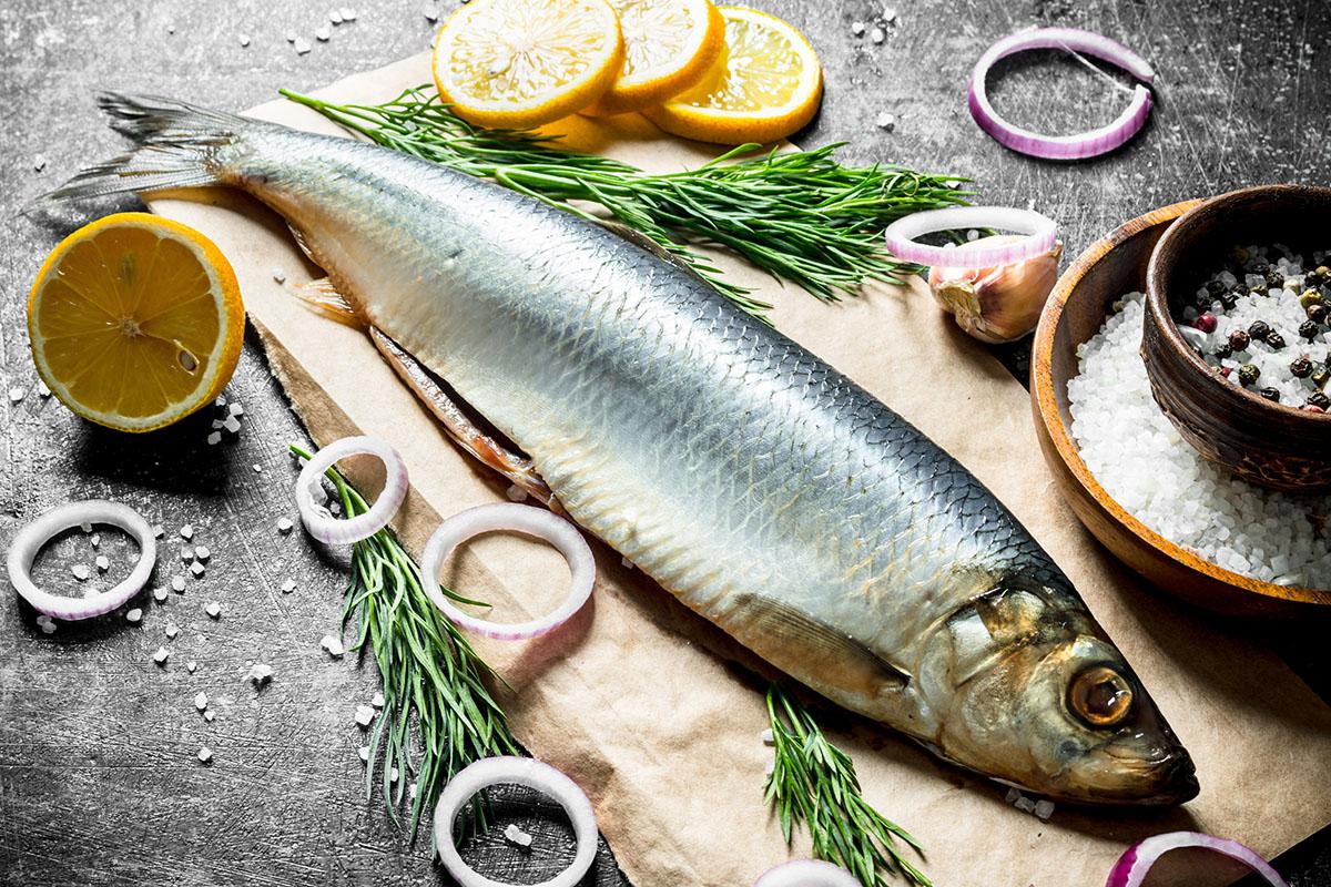 ООО Рыбный путь