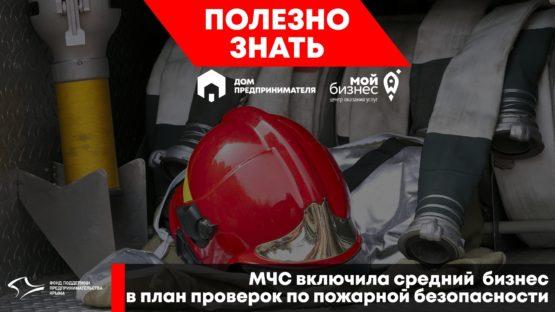 МЧС включила средний  бизнес в план проверок по пожарной безопасности.